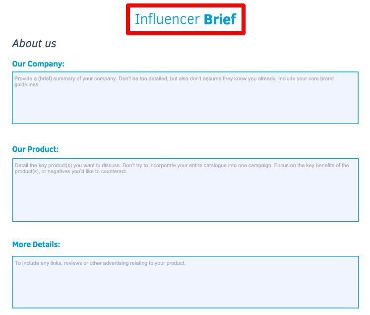 modèle de brief de campagne influenceur en pdf
